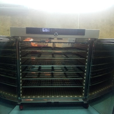 Oven Pengering   (Ged. Workshop)